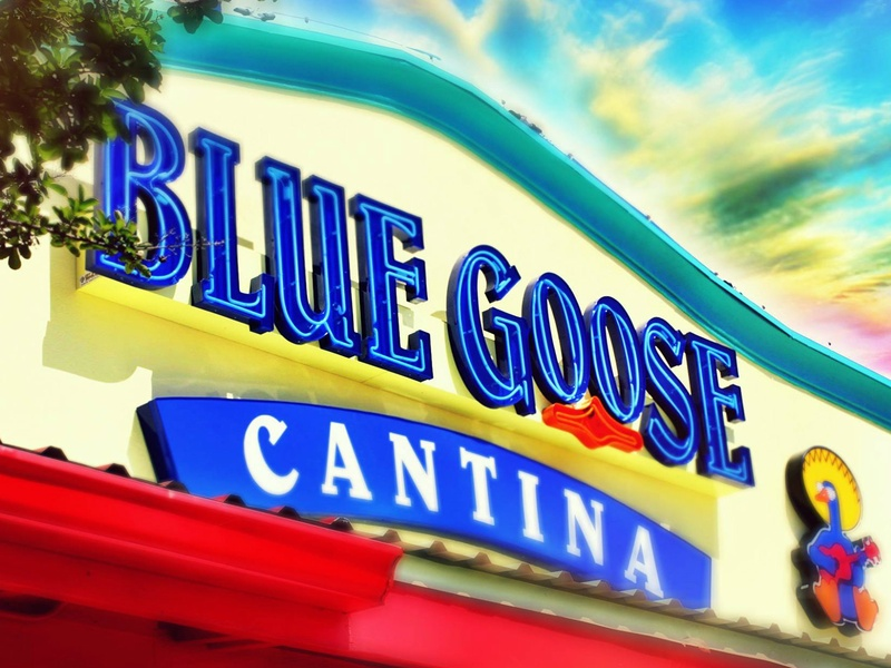 Blue Goose Cantina Data Breach